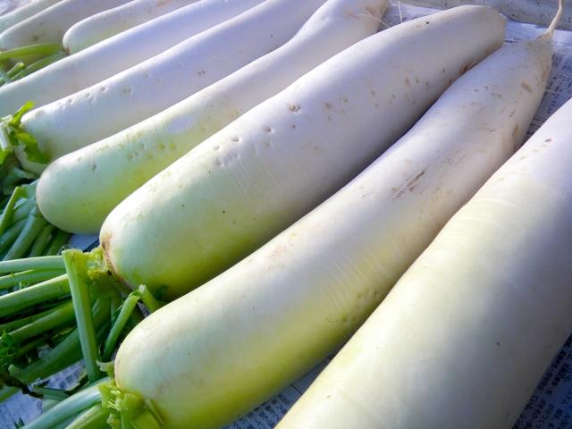 おはよう朝日です レシピ 冬野菜 保存法 白菜