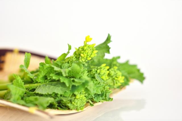 よ~いドン! 産地の奥さんごちそう様 料理 作り方 レシピ トミーズ健 石田靖 菜の花