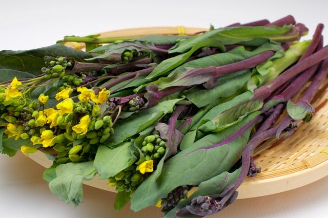 おはよう朝日です レシピ 春野菜