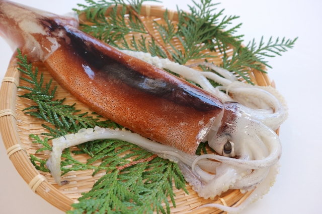 よ~いドン! 産地の奥さんごちそう様 料理 作り方 レシピ トミーズ健 石田靖 若狭イカ