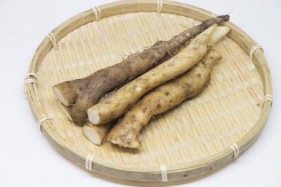 相葉マナブ なるほどレシピ 旬の産地ごはん 作り方 材料 自然薯 1月20日