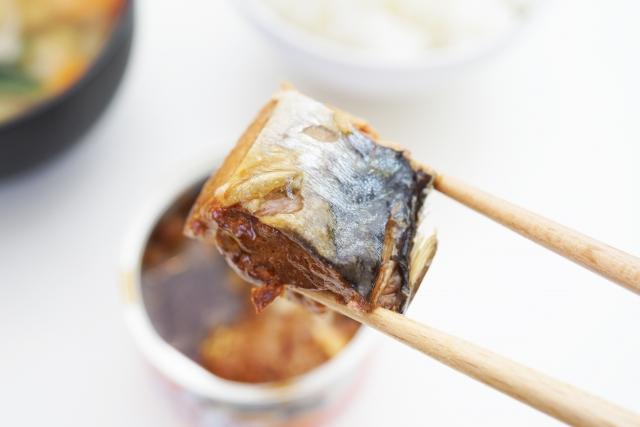 名医のTHE太鼓判 食材総選挙2019 体に良い食材 ランキング 健康効果 サバ缶 ダイエット 痩せホルモン