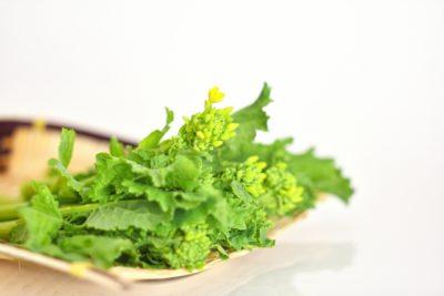 キャスト レシピ 名人が作る春のおばんざい 菊乃井 村田 菜の花