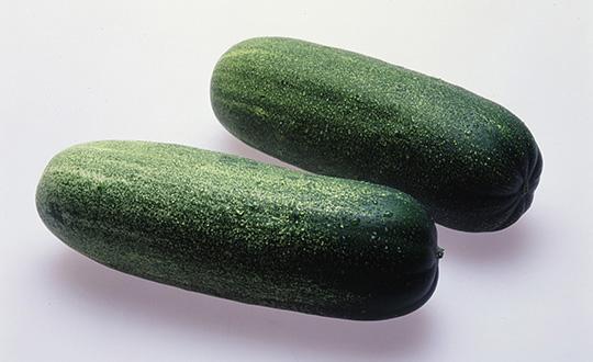 青空レストラン レシピ 作り方 5月11日 加賀野菜 加賀太きゅうり