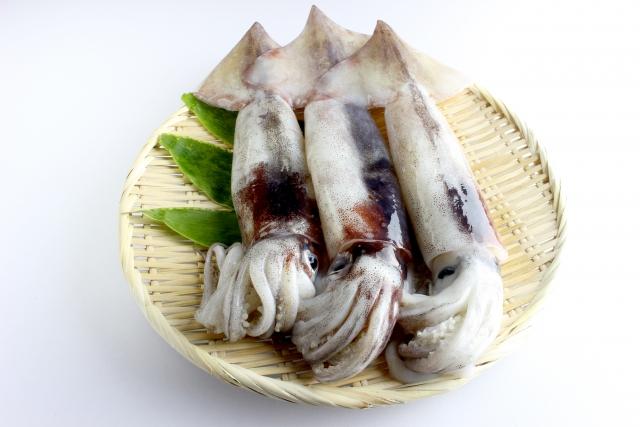 よ~いドン! 産地の奥さんごちそう様 料理 作り方 レシピ トミーズ健 石田靖 スルメイカ