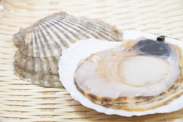 青空レストラン レシピ 作り方 6月8日 ホタテ