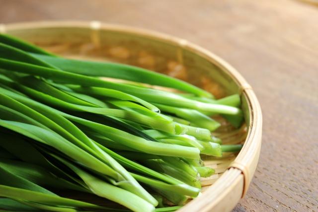 キャスト レシピ 作り置き調味料 中華風ニラだれ
