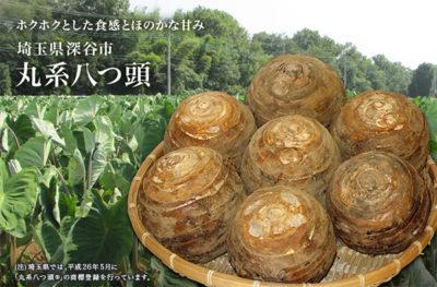 青空レストラン レシピ 作り方 里芋 丸系八つ頭