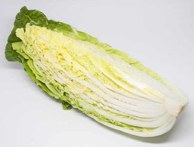 ヒルナンデス レシピ 料理の超キホン検定 作り方 材料 白菜のクリーム煮