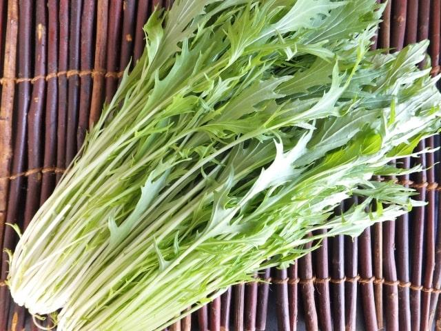 ヒルナンデス レシピ 作り方 東京農家 水菜の肉巻き