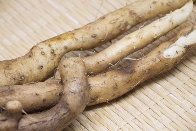 相葉マナブ 自然薯堀り 作り方 材料