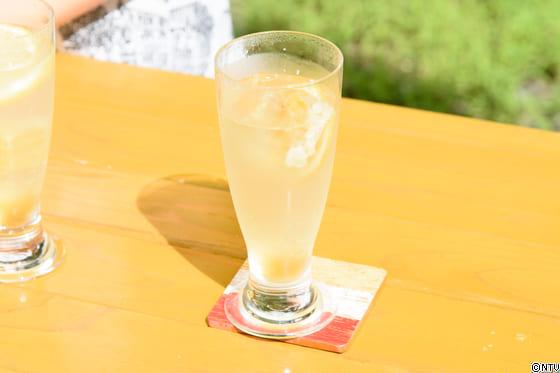 青空レストラン レシピ 作り方 巣蜜 ハチミツ レモンスカッシュ