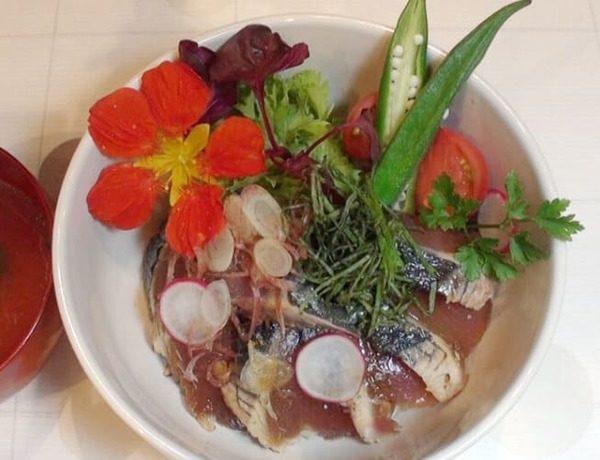 ZIP レシピ 巣ごもりレシピ ちびっこ料理人 かつおのタタキ漬け丼