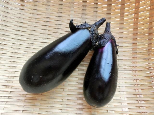 世界一受けたい授業 TEAMNACS 森崎 北海道 夏野菜 パワーサラダ 米ナス