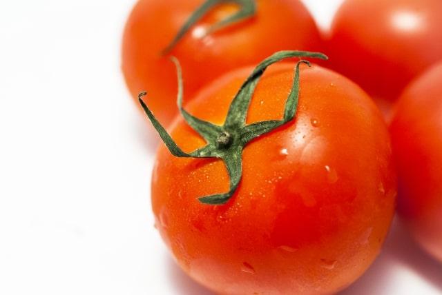 ヒルナンデス レシピ 作り方 漬けるだけレシピ 遠藤香代子 万能ダレ トマト味噌ダレ