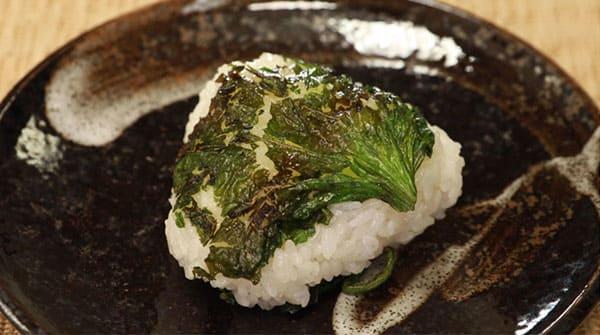 相葉マナブ 旬の産地 鎌倉野菜