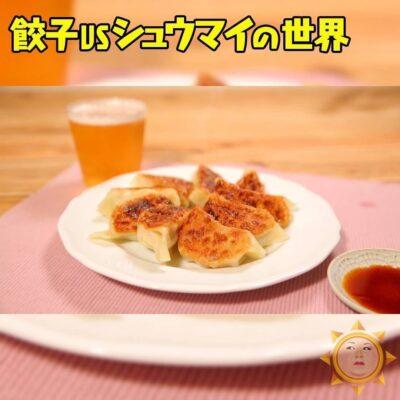 マツコの知らない世界 ビールに合う 最強アレンジレシピ 紅生姜餃子
